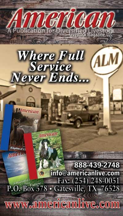 American Livestock Magazine
