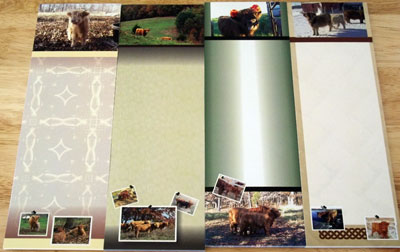 Highland Cattle Notepads